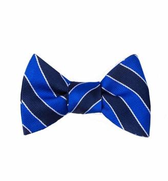 Ties.Com Men's 100% Silk Fane American Repp Striped Stripe Butterfly Self Bow Tie - Blue - One size