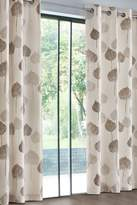 Next Tranquil Leaf Studio* Eyelet Curtains - Natural