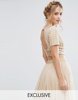 Lace and Beads Lace & Beads Cropped Top with Embellishment and Open Back Co Ord