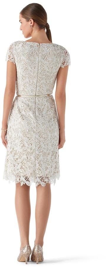 White House Black Market Ecru Guipure Lace Dress
