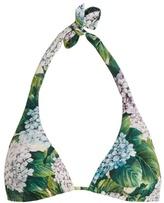 Dolce & Gabbana Hydrangea-print triangle bikini top