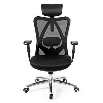 STUDY Ebern Designs High Back Mesh Office Chair Adjustable Lumbar Support&headrest Home Black Ebern Designs