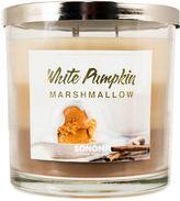 SONOMA Goods for LifeTM White Pumpkin Marshmallow 14-oz. Candle Jar