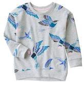 Gymboree Sparrow Sweatshirt