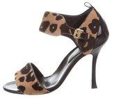 Sergio Rossi Ponyhair Leopard Sandals