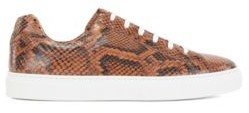 HUGO BOSS Low-top cupsole trainers in python-print Italian leather
