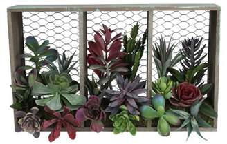 """Northlight 10"""" Artificial Mixed Succulent Arrangement in Wood Box and Chicken Wire Wall Decor"""
