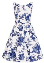 Quiz White And Blue China Print Skater Dress