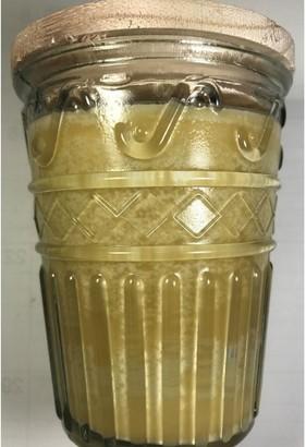 Overstock Swan Creek Timeless Collection Wam Cinnamon Buns Candle