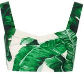 Dolce & Gabbana Printed Cotton And Silk-blend Brocade Bra Top - Green