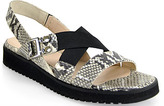 Aquatalia by Marvin K Gail - Flat Sandal in Natural Marble Python