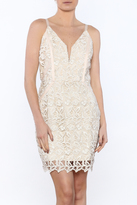 Greylin Olivia Lurex Lace Dress