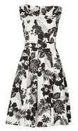 Dorothy Perkins Womens *Izabel London Multi Black Fit and Flare Dress- Black