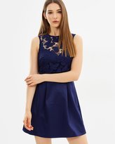 Lipsy Butterfly Lace Skater Dress