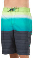 Speedo Surging Stripe E-Board Shorts