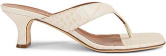 Paris Texas Soft Moc Croco 45 Thong Sandal in Ivory | FWRD