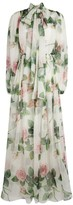Dolce & Gabbana Floral Maxi Dress