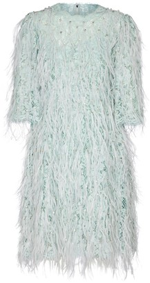Dolce & Gabbana Feather-trimmed embellished lace minidress