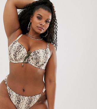 Dorina Curve padded bikini top in snake print-Multi
