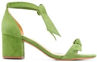 Alexandre Birman tie ankle sandals