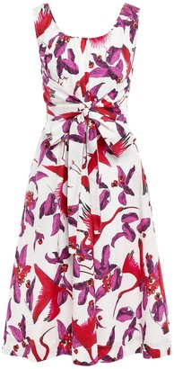 Isolda Knee-length dresses