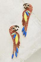 Elizabeth Cole Of A Feather Drop Earrings