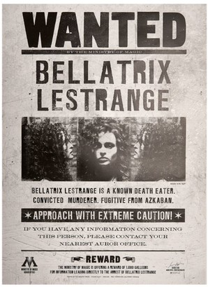 Bellatrix Harry Potter Lestrange MinaLima Poster