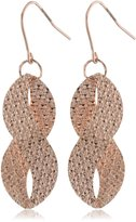 Amazon Collection Goldtone Finish Silver Diamond Cut Twist French Wire Earrings