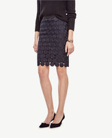 Ann Taylor Curvy Circle Lace Skirt