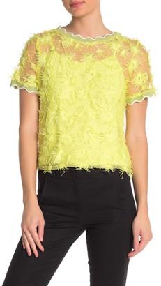 Gracia Lettuce Trim Eyelash Knit Top