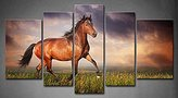 Tanda Canvas 5 Panels Brown Beautiful Brown Horse Running Trot On The Field On Sunset Grassland Picture Print On Canvas Animal Pictures