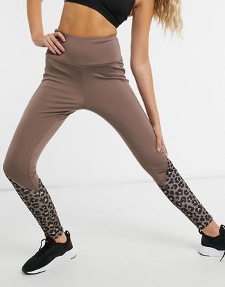 South Beach fitness calf panel print legging in earthy leopard