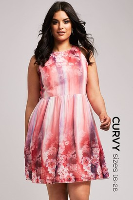 Little Mistress Curvy Pink Floral Fit and Flare Dress