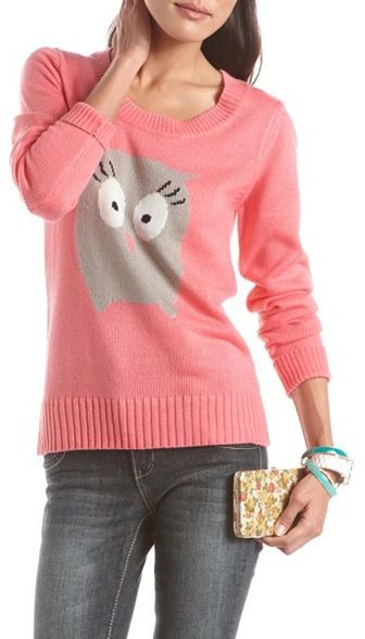 Charlotte Russe Soft Owl Pullover Sweater