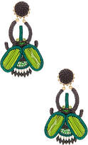 Mercedes Salazar Escabarajo Beetle Earrings in Green.