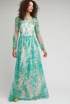 Anthropologie Ezra Tulle Maxi Dress, Green