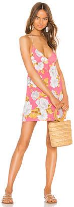Tularosa True Dress