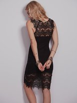 Peekaboo Lace Slip by Intimately at Free People