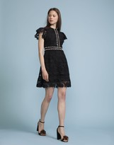 Cynthia Rowley Floral Lace Flutter Sleeve Dress