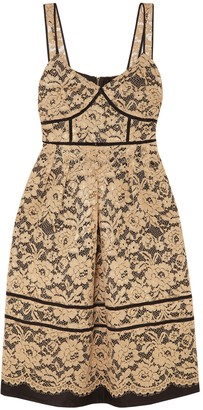 Draper James Knee-length dresses - Item 34939291SV