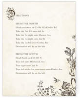 Minted Story Book Directions Cards