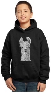 La Pop Art Boy's Word Art Hoodies - Llama