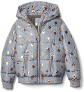 Gap Shiny dot puffer