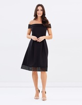 Dorothy Perkins Lace Scuba Dress