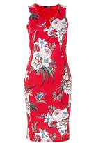 Quiz *Quiz Red Floral Print Midi Bodycon Dress