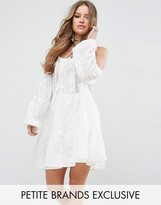 Glamorous Petite All Over Lace Cold Shoulder Skater Dress