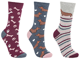 John Lewis Sausage Dog and Bone Print Ankle Socks, Pack of 3, Multi