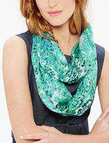 The Limited Printed Infinity Scarf