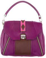 Matthew Williamson Leather Handle Bag