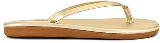 Ancient Greek Sandals Saionara Sandal
